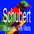 Schubert Serenade musictach